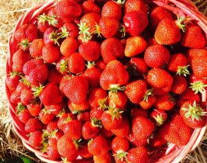 Take Your Fruit Straight to the Freezer. image by  strecosa. www.accordingtofrankie.com